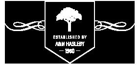 Banner-base2